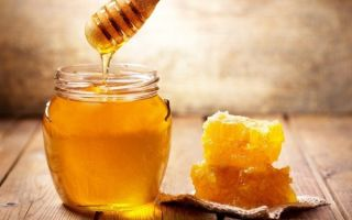 Мед для диабетика