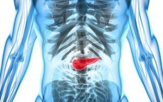 Какие функции выполняет поджелудочная железа