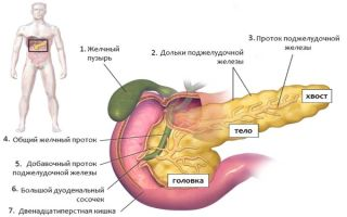 Воспаление хвоста поджелудочной железы