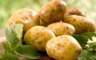 Можно ли при панкреатите есть картошку