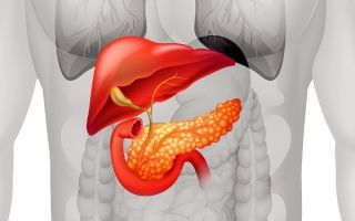 Симптомы недостатка ферментов поджелудочной железы