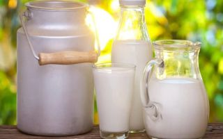 Можно ли пить молоко при панкреатите