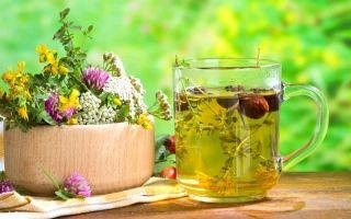 Народные средства при лечении панкреатита