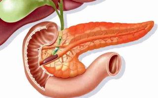 Что такое диффузные изменения поджелудочной железы