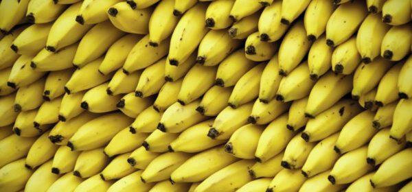 бананы стол 5п