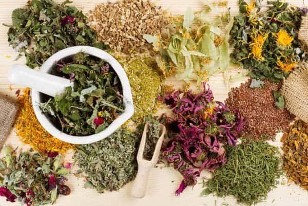 травы при панкреатите