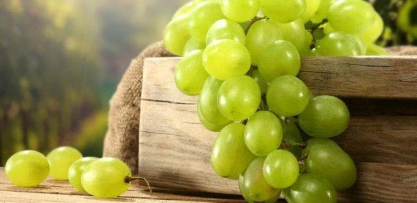 можно ли виноград