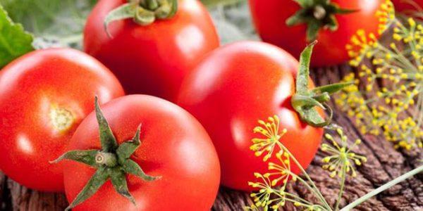 влияние помидора на организм