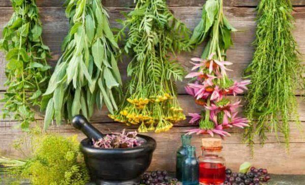 травяной сбор при панкреатите