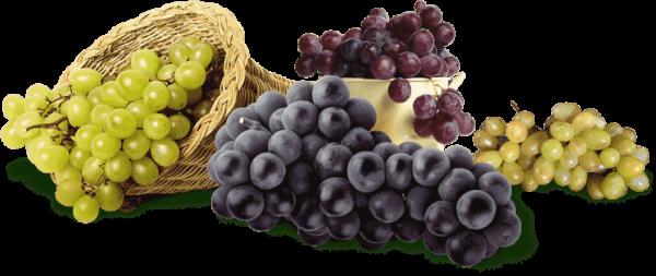виноград в острой стадии