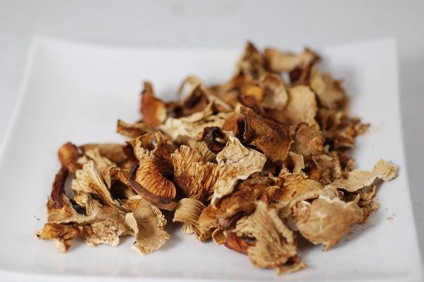 высушивание грибов